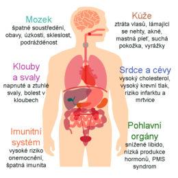 stres, syndrom vyhoření, jak stres ovlivňuje zdraví a tělo